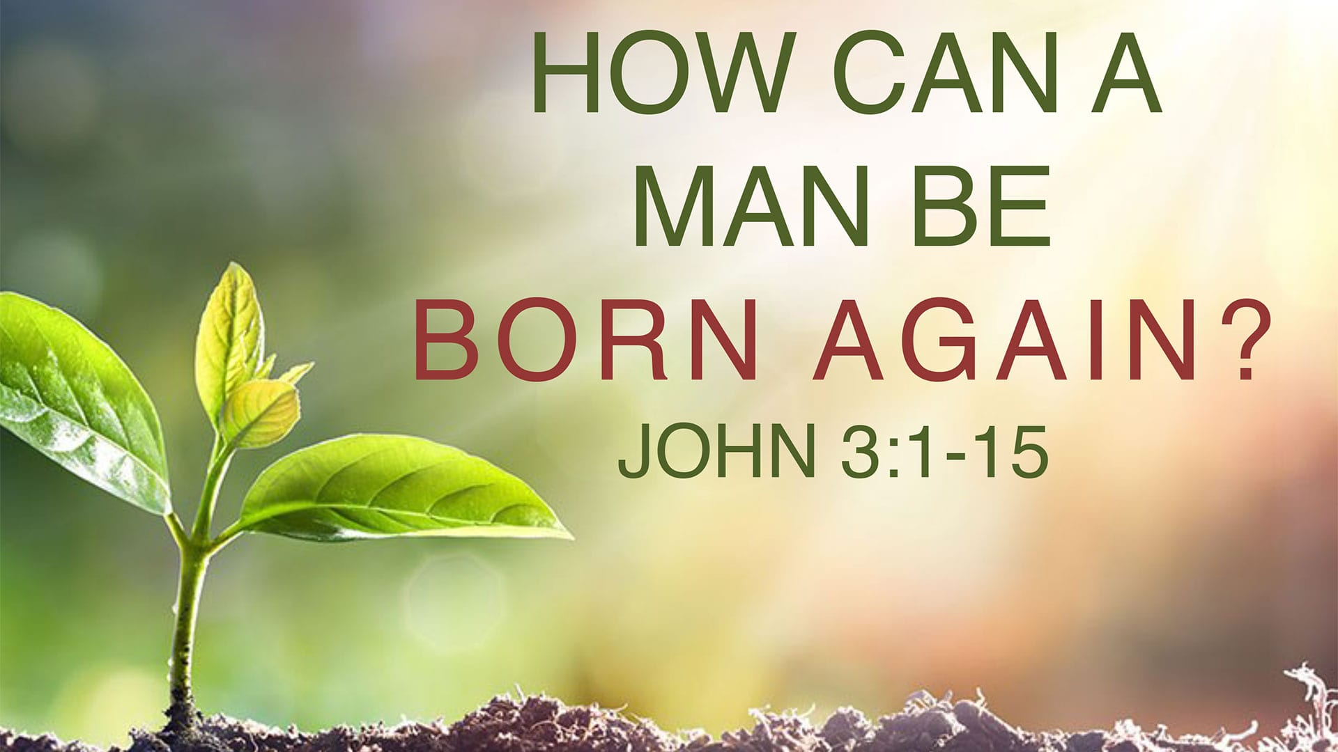 CBC_2020_12_06_AM_how_can_a_man_be_born_again_Outline_Thumbnail_1920x1080